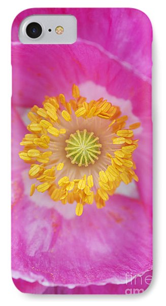 Pink Poppy IPhone Case by Tim Gainey