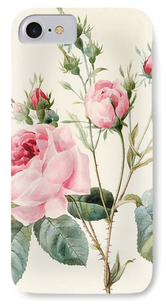 Pink Rose And Buds IPhone Case