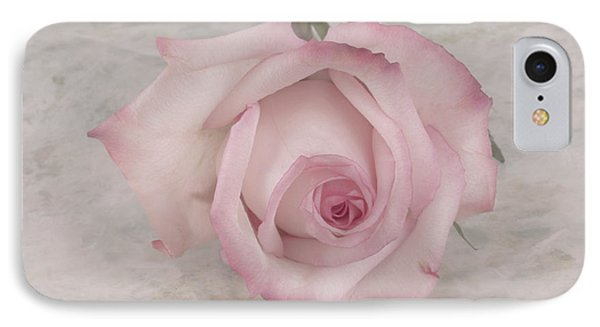 Pink Rose Beauty  IPhone Case by Sandra Foster