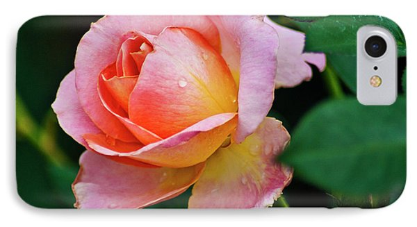 IPhone Case featuring the photograph Pink Rose by Bill Barber