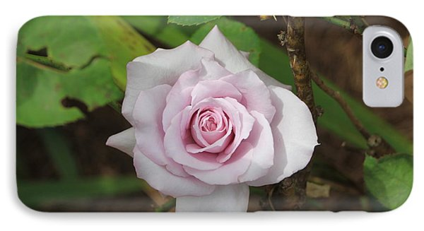 IPhone Case featuring the photograph Pink Rose by Jerry Battle