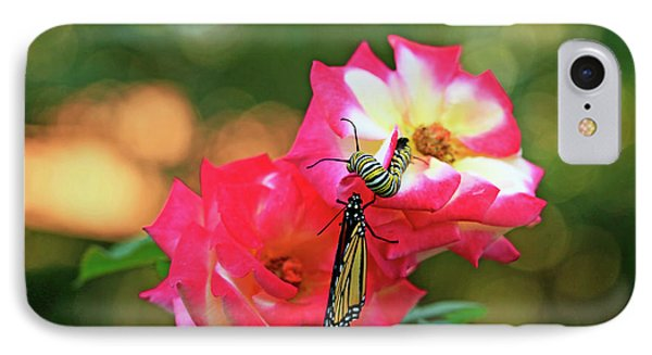 Pink Roses And Butterfly Photo IPhone Case by Luana K Perez