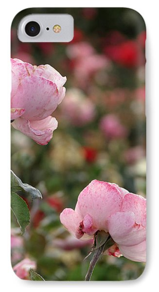 IPhone Case featuring the photograph Pink Roses by Laurel Powell