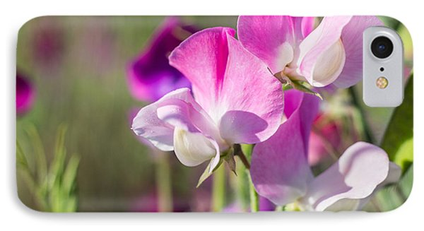 Pink Sweet Pea 3324 IPhone Case