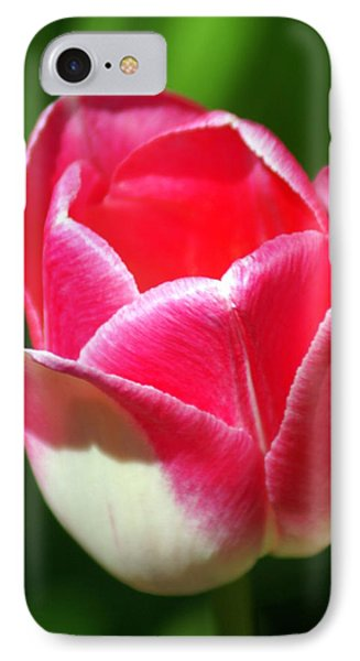 Pink Tulip Phone Case by Marty Koch