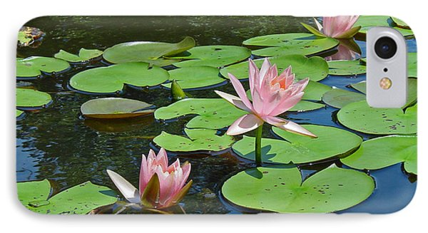 Pink Water Lilies Phone Case by Suzanne Gaff
