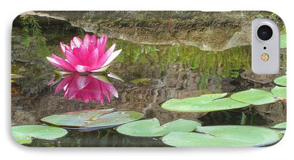 IPhone Case featuring the photograph Pink Waterlilly  by Laurianna Taylor