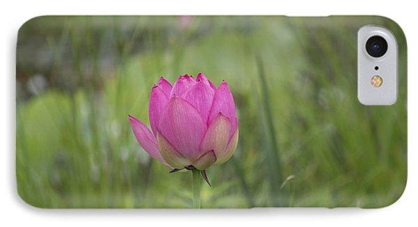 Pink Waterlily Bud Phone Case by Linda Geiger