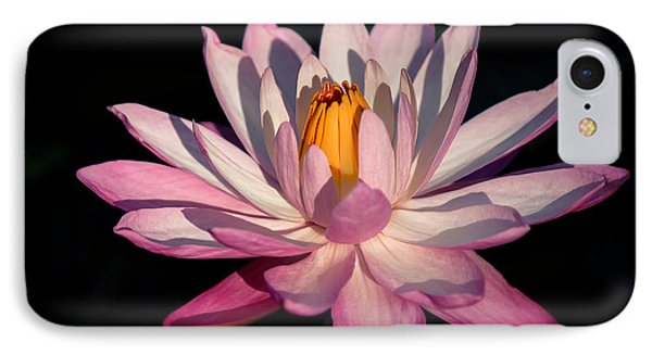 Pink Waterlily IPhone Case by Liesl Walsh