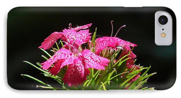 Pink William IPhone Case