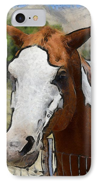 IPhone Case featuring the photograph Pinto In The Pasture Portrait  by Barbara Snyder