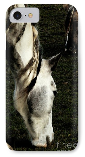 Piomingo IPhone Case by Linda Shafer