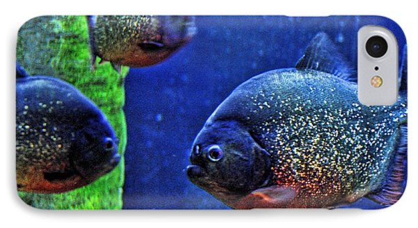 IPhone Case featuring the photograph Piranha Blue by Jan Amiss Photography