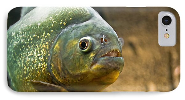 IPhone Case featuring the photograph Piranha by Yurix Sardinelly