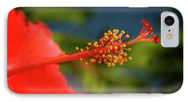 IPhone Case featuring the photograph Pistil Of Hibiscus by Robert Bales
