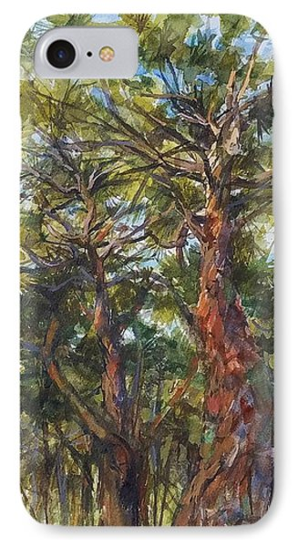 Pitch Pines, Cape Cod Phone Case by Peter Salwen