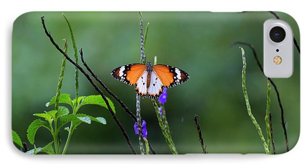 Plain Tiger Butterfly Phone Case by David Gn