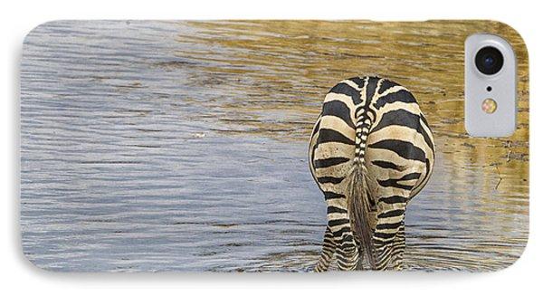 Plains Zebra IPhone Case by Kathy Adams Clark