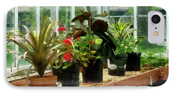 Plants In Greenhouse Phone Case by Susan Savad
