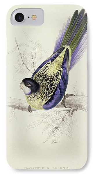 Parakeet iPhone 7 Case - Platycercus Brownii, Or Browns Parakeet by Edward Lear