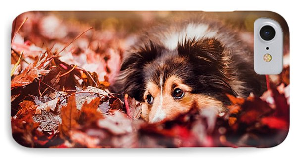 Playful Autumn Dog IPhone Case