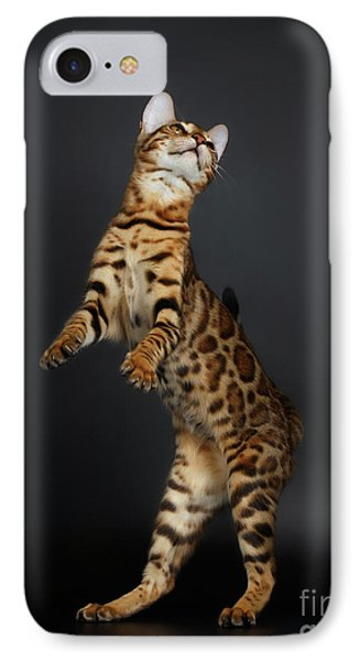 Playful Female Bengal Cat Stands On Rear Legs IPhone 7 Case by Sergey Taran