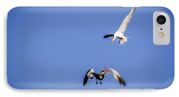 Playing Terns IPhone Case