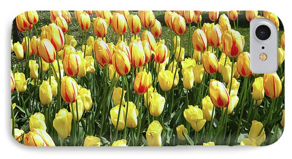 IPhone Case featuring the photograph Plenty Of Tulips by Manuela Constantin