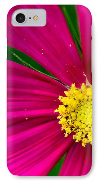 Plink Flower Closeup IPhone Case by Michael Bessler