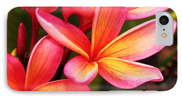 Plumeria - Pretty Pink IPhone Case