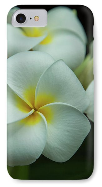 IPhone Case featuring the photograph Plumeria by Angie Vogel