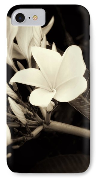 Plumeria Blossoms In Sepia  IPhone Case by Ann Powell