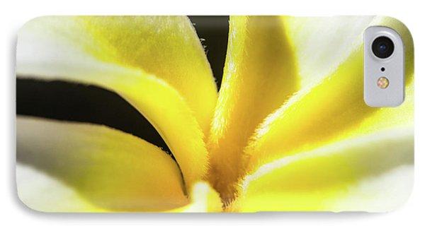 Plumeria Close Up IPhone Case