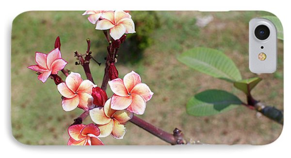 IPhone Case featuring the photograph Plumeria Flowers by Jingjits Photography