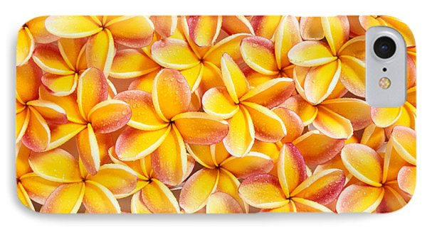 Plumeria Flowers IPhone Case