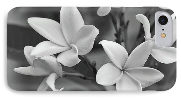 Plumeria Flowers IPhone Case by Olga Hamilton