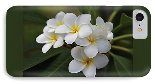 Plumeria - Golden Hearts IPhone Case