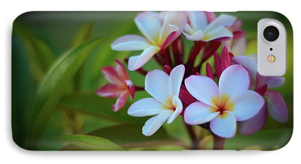 IPhone Case featuring the photograph Plumeria Sunset by Kelly Wade