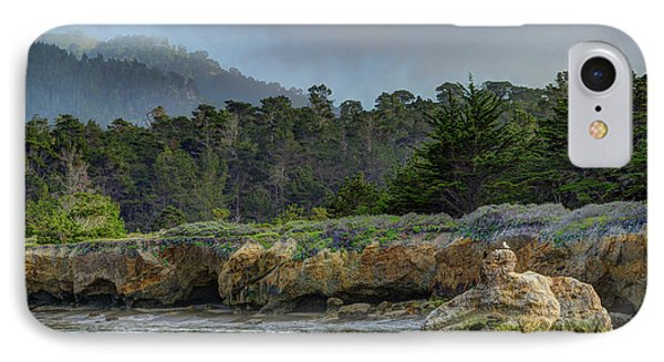 Point Lobos, Calif. Whaler's Cove IPhone Case by Wendy Seagren