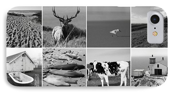 Point Reyes National Seashore 20150102 Bw IPhone Case by Home Decor