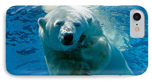 IPhone Case featuring the photograph Polar Bear Contemplating Dinner by John Haldane