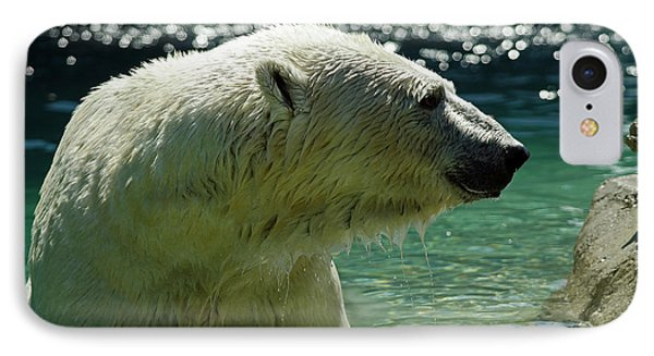 IPhone Case featuring the photograph Polar Bear by JT Lewis