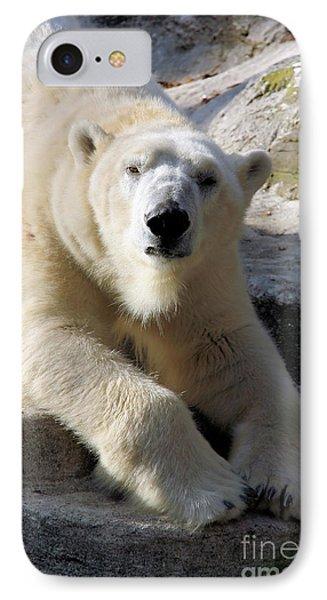 Polar Bear Phone Case by Karol Livote