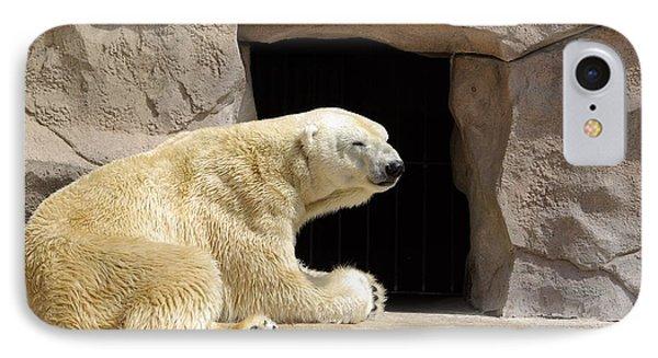 Polar Bear Prayers IPhone Case by Linda Mishler