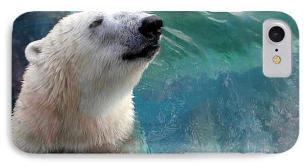 Polar Bear Up Close IPhone Case