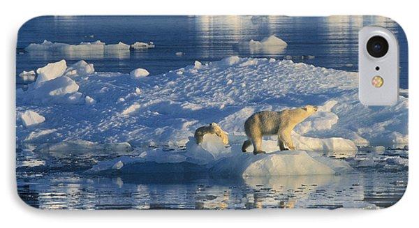 Polar Bear Ursus Maritimus Adult Phone Case by Rinie Van Meurs