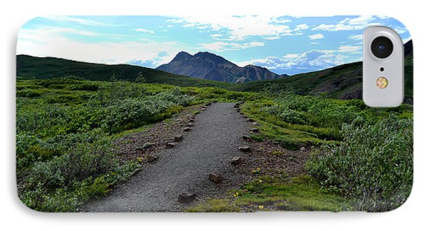 Polychrome Pass Trail, Denali IPhone Case by Zawhaus Photography