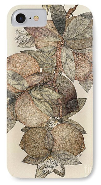 Pomegranate Fruit, 1867 IPhone Case