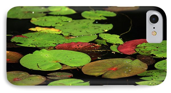 Pond Pads Phone Case by Karol Livote