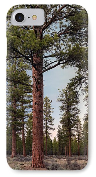Ponderosa Forest IPhone Case by Leland D Howard